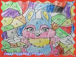 ÇINAR ÖZLEMEK / 5.5 YAŞ